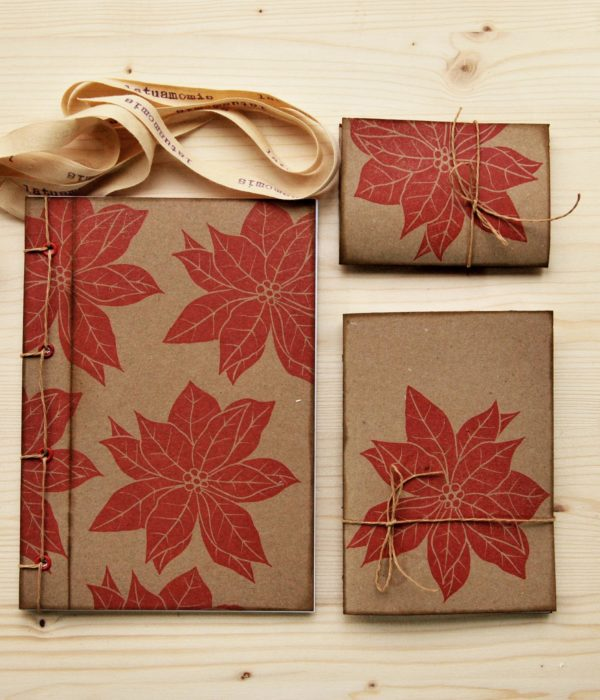 Idee regalo ecologiche Set regalo Euphorbia quaderni natalizi