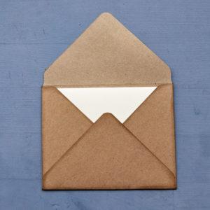 Set carte da lettera Gingko Leaves retro busta