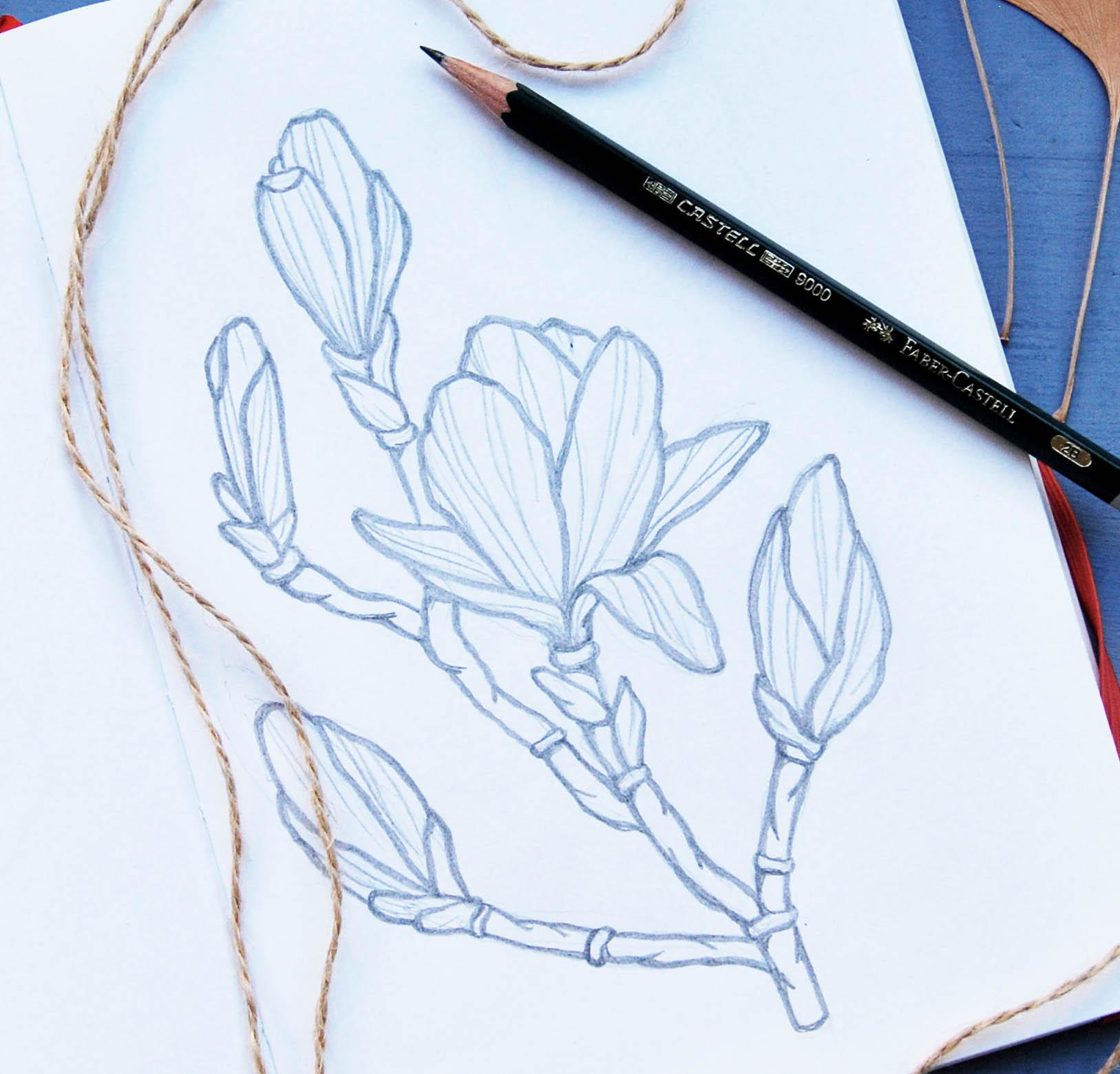Blog disegno