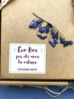 Boxed gift erbario B1