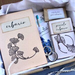 Gift box erbari gingko