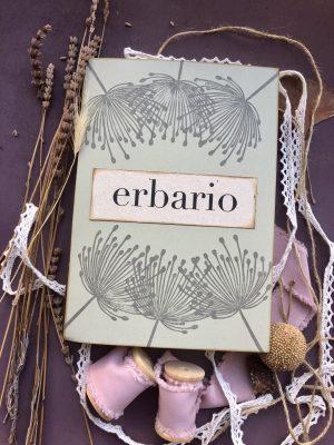 Boxed gift erbario 3